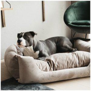 KENTUCKY DOG BED VELVET BEIGE SMALL